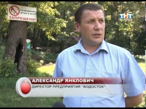 В Саратове начали наводить порядок на Андреевских прудах