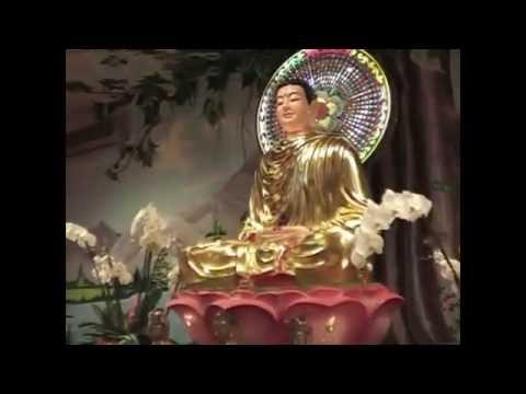 Cung nghinh xa loi Phat Chua Kim Quang 07 10 2011 phan 2