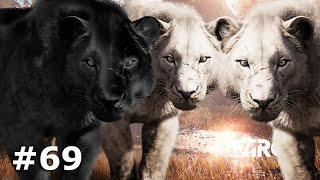 LUTEI CONTRA UM GRUPO DE 6 LEÕES DAS CAVERNAS - Far Cry Primal #69