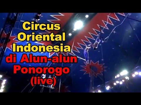 Pertunjukan Circus Oriental Indonesia di Alun-alun Ponorogo (live)