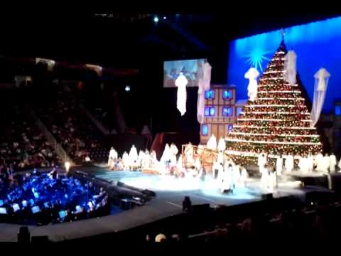 The living christmas tree knoxville tennessee - The Living Christmas Tree Knoxville Tennessee - YouTube