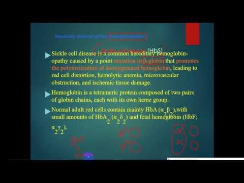 pathology - dr. Tahseen  -- Hemolytic Anemia (1)