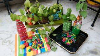 ये करोगे तो 100%Result मिलेगा,Money plant बढ़ेगी और हरी भरी भी रहेगी,anvesha,s creativity
