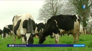 «Le modèle de l'agricuture productiviste va s'effondrer» - Mélenchon