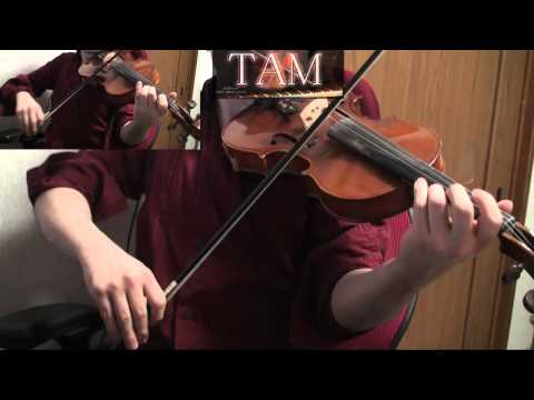 Fate/Zero OP (Full ver) [oath sign / LiSA] Violin:TAM(TAMUSIC)