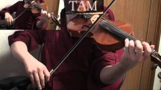 Fate/Zero OP (Full ver) [oath sign / LiSA] Violin:TAM(TAMUSIC)