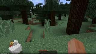 Minecraft İtem Kodu Nasıl Yazılır?