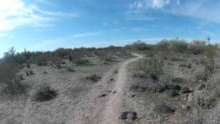 Biking desert trail