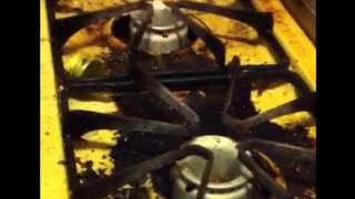 Roach Control Los Angeles Orange County Inland Empire San Go
