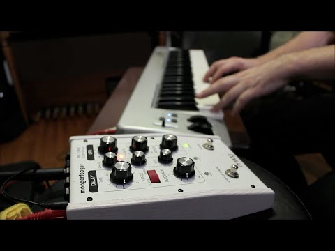 GUITAR PEDAL SPOTLIGHT : CLUSTER FLUX, FLANGER HOAX, 8 STEP PROGRAM