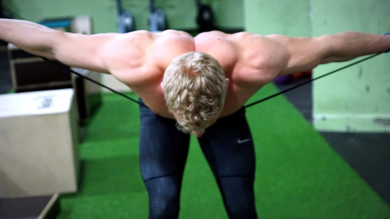 Assisting Mobility Work for Lower and Middle Traps