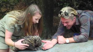 Bindi takes Derek on a tour of Australia Zoo!