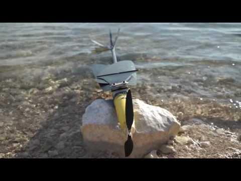 Aquatic Micro Air Vehicles for Water Health Monitoring