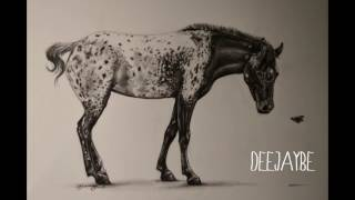 HORSE APPALOOSA Realistic Pencil Drawing SPEED DRAW