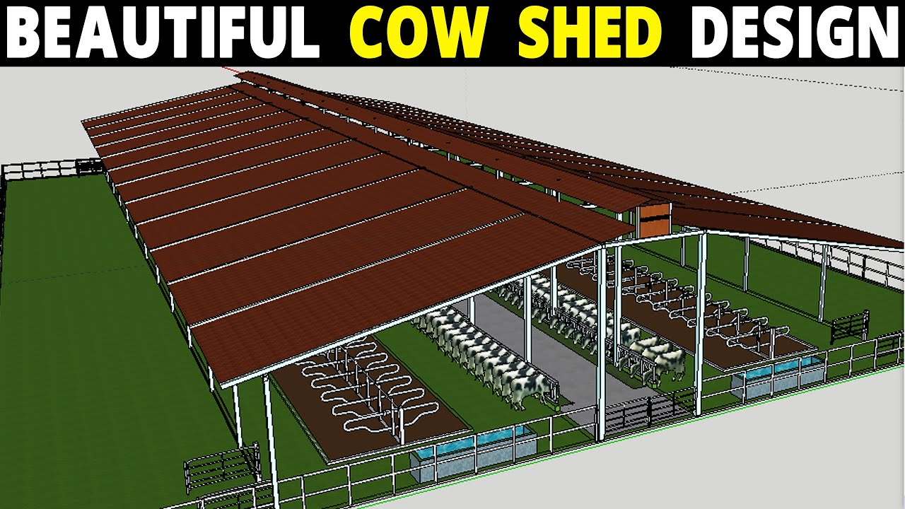 Cow Shed Plans And Design Dairy Farm Design Youtube