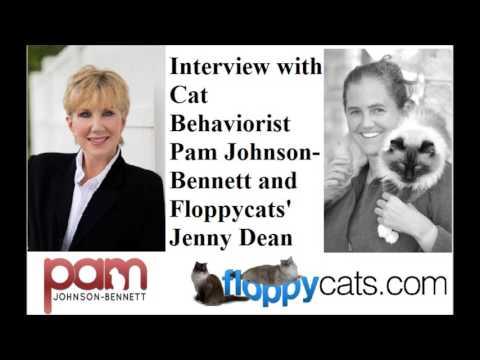 Cat Behaviorist Pam Johnson-Bennett Interview With Floppycats Jenny Dean - ねこ - ラグドール