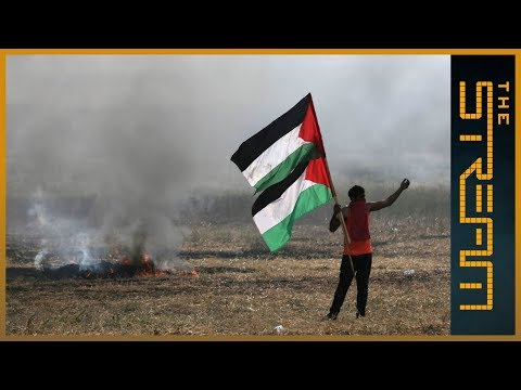 🇵🇸 How is the Great Return March driving grassroots Palestinian activism? | The Stream