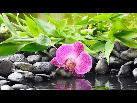 Relaxation Music For Stress Relief and Healing Water Sounds - Meditation Music For Positive Energy