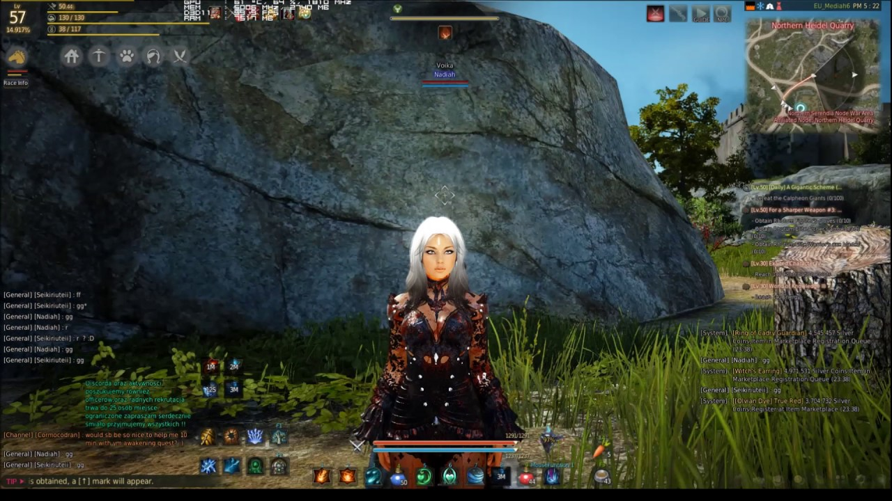 Black Desert Online Awakening Witch vs Awakening Wizard