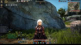 Black Desert Online Awakening Witch vs Awakening Wizard   Maxi Voika