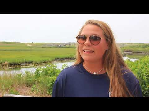 Fun things to do on Cape Cod - EsCape TV Episode 11