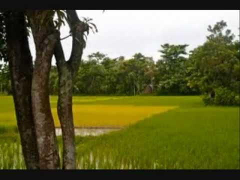 Bangla Desher Gaan (Jonmo amar dhonno holo)