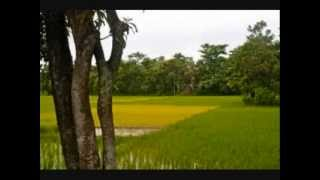 বাংলা দেশের Gaan থেকে Jonmo Amar Dhonno Holo