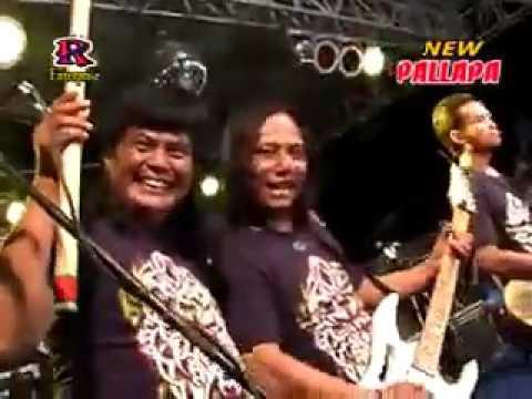 Alay   Vivi Rosalita   New Pallapa Live In Setro Menganti Gresik 2011