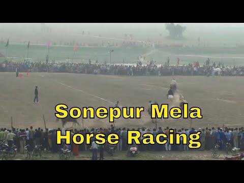 CRAZY HORSE RACING Sonepur Mela Bihar