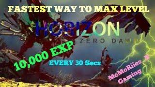 Horizon Zero Dawn | 10,000 EXP EVERY 30 Secs | FASTEST WAY TO LEVEL UP