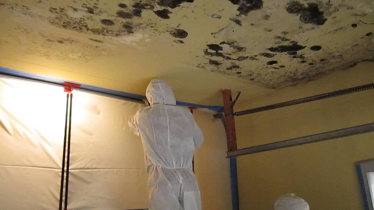 Garage Cutting Moldy Ceiling With A Kett Saw Youtube
