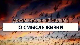 О смысле жизни СУПЕР документальный фильм