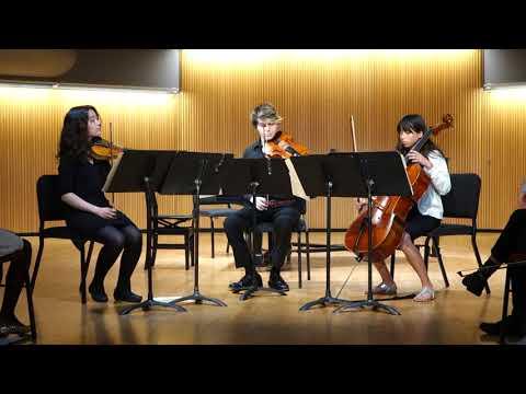 Raina plays in Dohnanyi serenade for string trio, Romanza