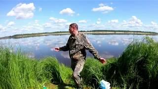 Рыбалка на реке Северная Двина. Июль 2019 г.