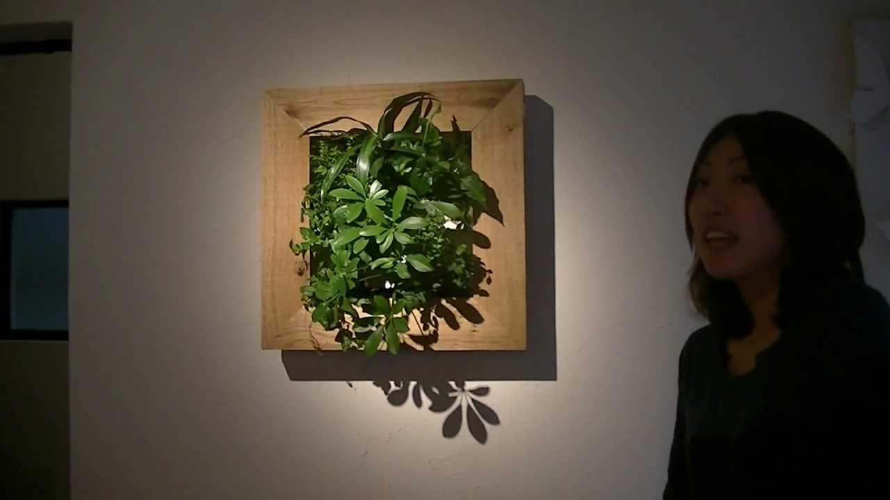 リグナ】大自然を壁に飾る!「my gallery」のご紹介 - youtube