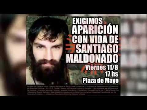 Aparición Con Vida De Santiago Maldonado Youtube