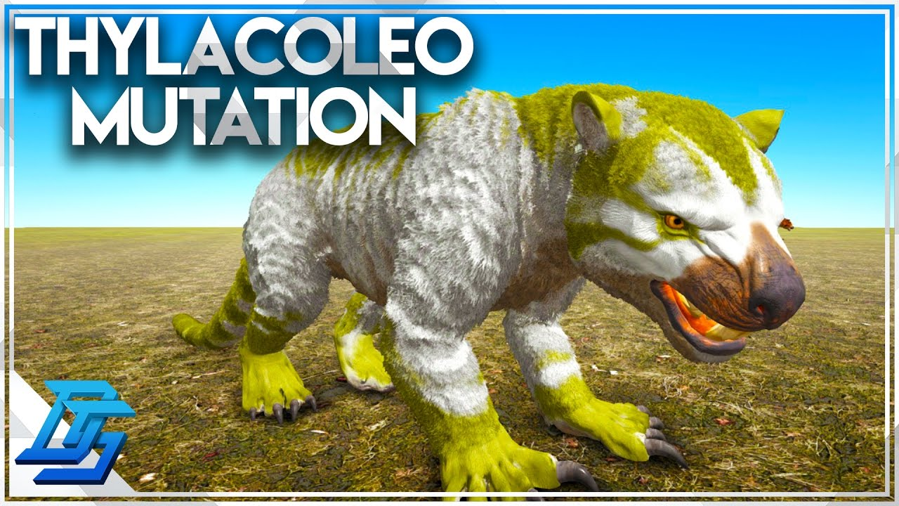 Thylacoleo Color Mutation , Twins , Breeding Montage!   Ark: Survival  Evolved