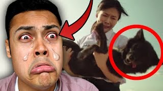 REACTING TO THE MOST SAD VIDEOS IN 2017 (YOU 100% WILL CRY)