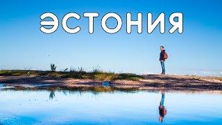 ЭСТОНИЯ! Эстонцы не знают Гагарина, отнял деньги на пляже, прыжок с башни, блуждаем по болоту