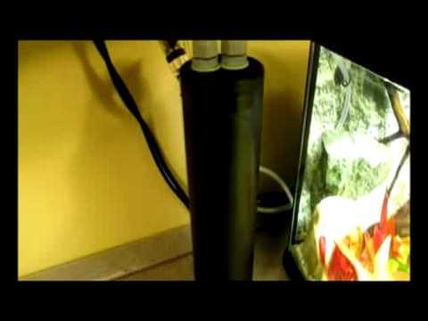 acquario fai da te produzione di anidride carbonica da