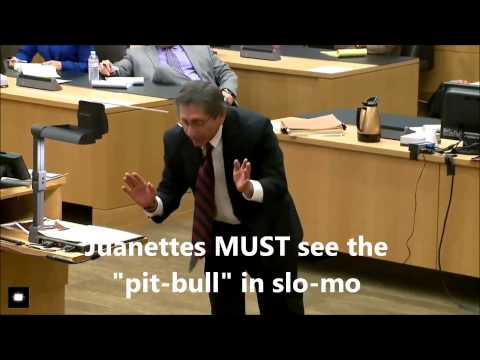 Juan Martinez - Prosecutorial Ballet In The Court Room