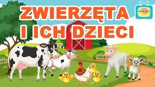 Zwierzęta i ich dzieci - Nauka zwierząt dla dzieci - Bajka edukacyjna dla dzieci | KIDSOLANDIA TV