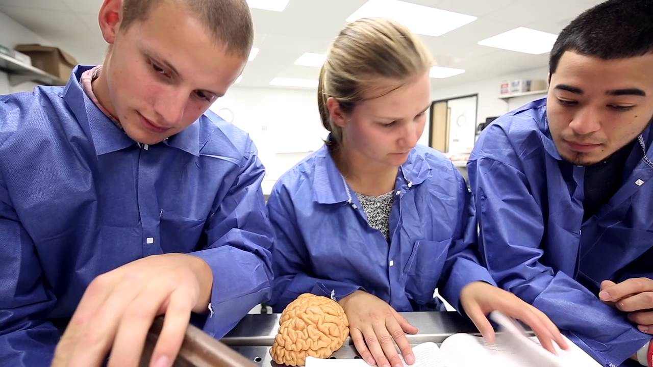 Human Anatomy Lab Ithaca College Youtube