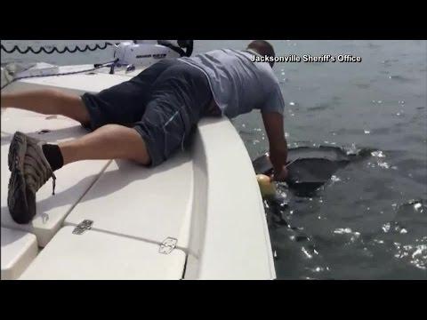 Jacksonville deputies rescue 9-foot sea turtle