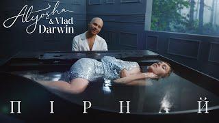 Фото Alyosha And Vlad Darwin   Пірнай Official Music Video