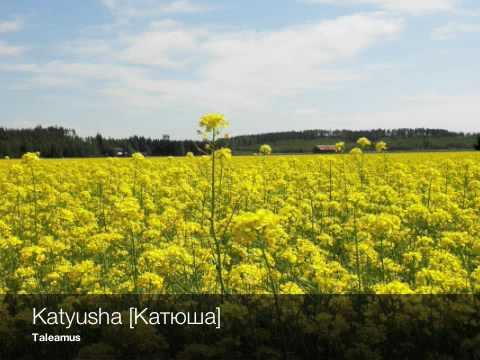 Taleamus - Katyusha [Катюша]