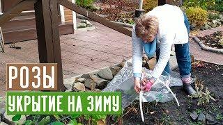 УКРЫТИЕ РОЗ НА ЗИМУ 🌹 Просто и эффективно Садовый гид