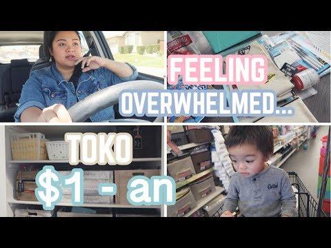 Vlog #200 | KE TOKO ISI $1 SEMUA, DOLLAR TREE HAUL! RE-ORGANIZE UTILITY CLOSET