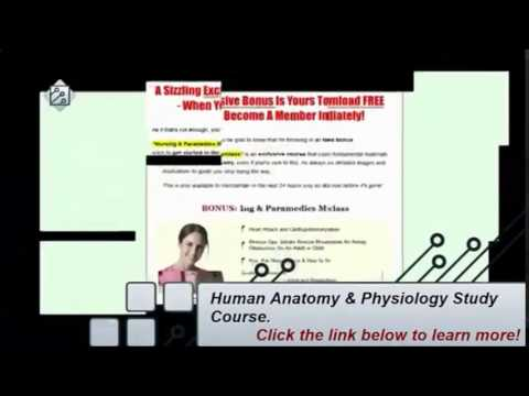 accredited human anatomy course online