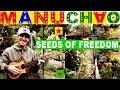 Manu Chao: SEEDS OF FREEDOM
